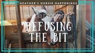 Horse Problems-refusing The Bit
