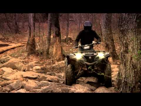 2016 Yamaha Grizzly EPS LE in Orlando, Florida
