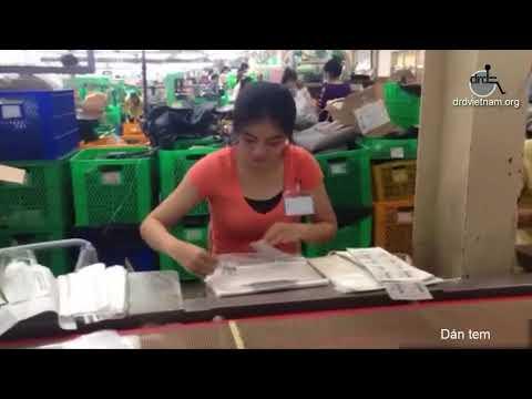 Một số công việc người khuyết tật có thể làm tại công ty | DRD Vietnam
