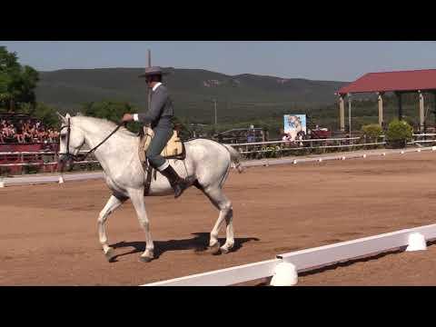 2 Fase Doma Vaquera 170721 Video B