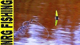 Ловля крупного карася на поплавочную удочку осенью