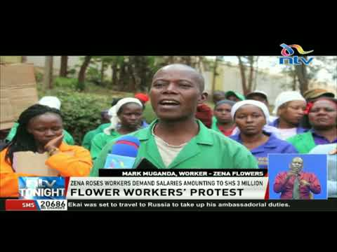 Zena Roses workers demand salaries amounting to Ksh. 3M