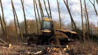 preview picture of video 'Felling poplars in Gap wood'