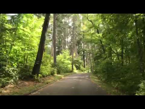 Video Of Itasca State Park, MN