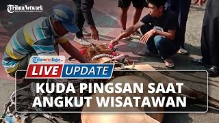 LIVE UPDATE: Kuda Pingsan saat Tarik Kereta Wisatawan di Depan Balaikota Bogor