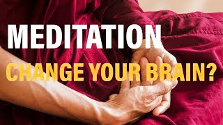 How Meditation Can Change Your Brain With Sara Lazar