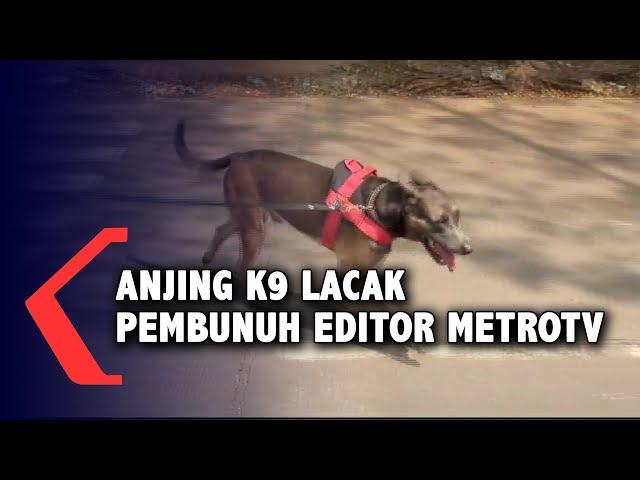Anjing K9 Lacak Pelaku Pembunuhan Editor MetroTV Sempat Mampir ke Warung