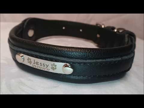Hunde-Halsband mit Gravur