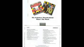 The Fabulous Thunderbirds -Wait On Time