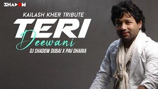 Teri Deewani | DJ Shadow Dubai X Pav Dharia | Kailash Kher Tribute