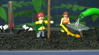 Selbstbewässerung. Lechuza Topf für draußen und drinnen nutzen wir für eine exotische Pflanzen