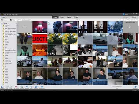 Photoshop Elements 2020 Tutorial The Organizer Environment ...