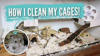 How I Clean My Hamster Cages!