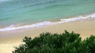 preview picture of video 'アキーラさん宿泊!Srilanka・ヒッカドゥワ・Coral-seas-beach-resort,Hikkaduwa1'