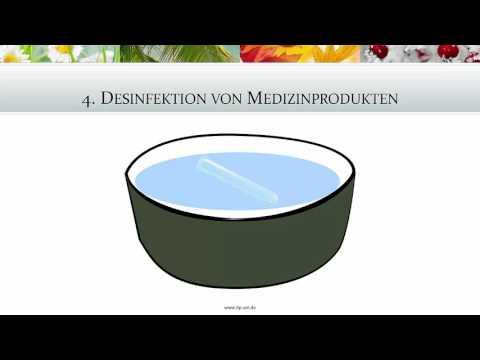 Die Würmer und die Eichhörner im Urin