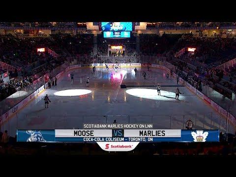 Moose vs. Marlies   Feb. 27, 2019