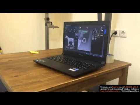 Рентгенография коленного сустава для лошади, тест защитного кофра