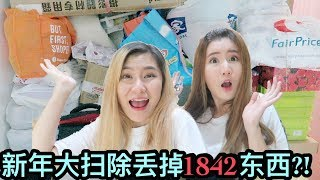 MASSIVE Chinese New Year Spring Cleaning! CLEARED 1,842 ITEMS?! Marie Kondo - Does this spark joy?