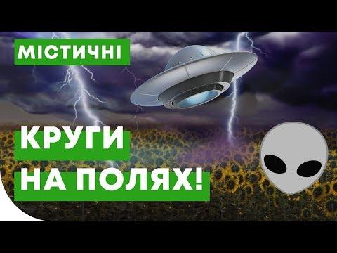 Подсолнечник пропадает от молнии?