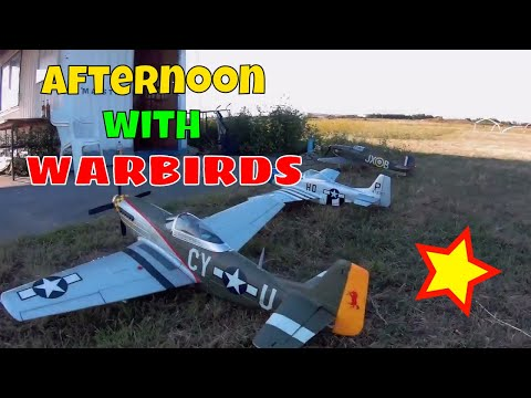 afternoon-with-warbirds-from-eflite-fms-and-hking