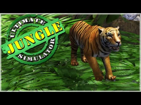 Wild Animals of the Jungle!! Tigers, Anacondas, Pandas, and More!! • Ultimate Jungle Simulator!
