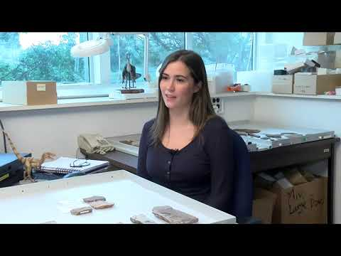 This Week in History – Season 8 Episode 8: Fossil Sites in British Columbia