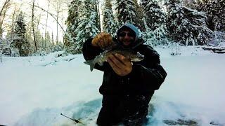 Рыбалка в архангельской области зимняя