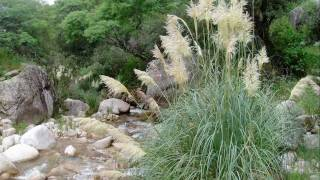 preview picture of video 'Quebrada de Anjullon'
