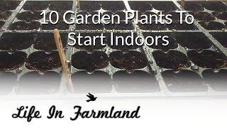 Getting A Jump On Garden - Starting Plants Inside