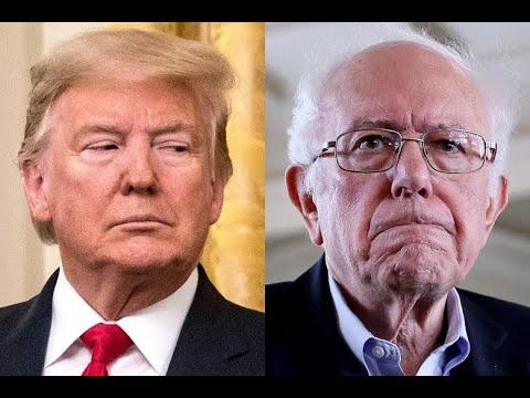 MSNBC: Bernie Wouldn't Have Won