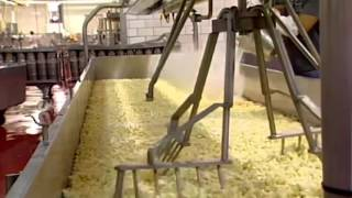 Amish Cheese & How It's Made