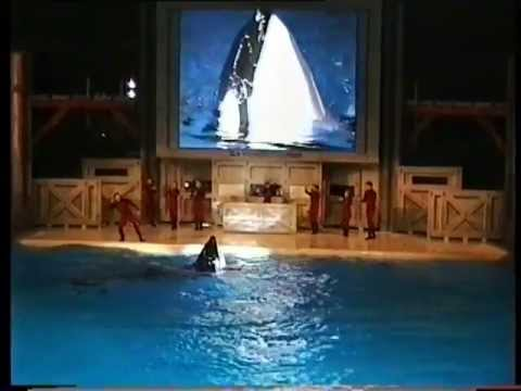 SeaWorld's Shamu Rocks America Show - A Trainer Leaving, His Last Performance