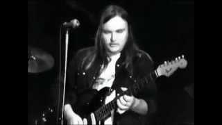 Lynyrd Skynyrd In Concert Winterland 1975