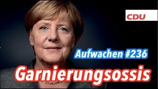 Aufwachen #236: Horse Race, Weltpolitik + Wahlkampfplakate (mit Hans Jessen & Mareike Foecking)