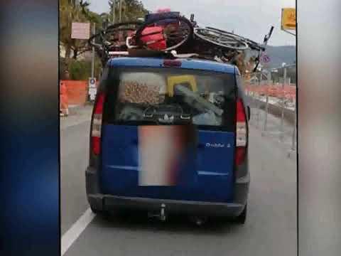 DIANO MARINA, LA POLIZIA LOCALE DENUNCIA DUE UNGHERESI CHE CERCAVANO DI ACCAMPARSI