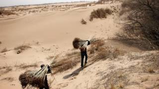 Desertification in China - Isabelle and Dang