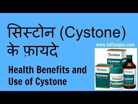 Video Cystone Ke Fayde | सिस्टोन के गुण और उपयोग | Cystone Use and Health Benefits