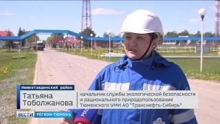 «Транснефть-Сибирь» планирует использовать более экологичное топливо в своих котельных