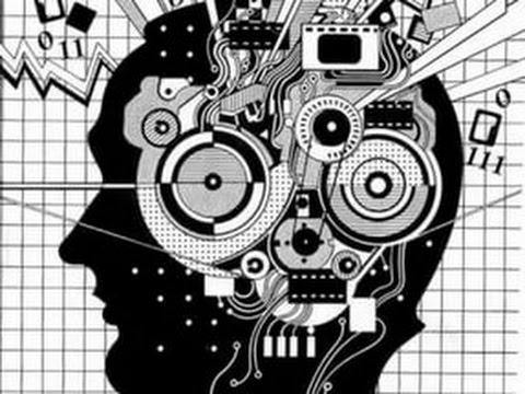 Топ 10  Мифы о нашем мозге!