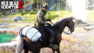 Red Dead Redemption 2 | Huge Easter Egg Found! Possible
