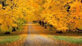 Осенние листья на землю спадают