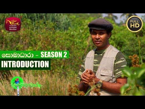 Sobadhara - සොබාධාරා | Season- 02 | Introduction | 2017-12-29 | Rupavahini Documentary