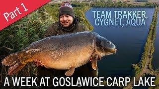 Carp Fishing In Poland   A Week At Goslawice Carp Lake   Part 1