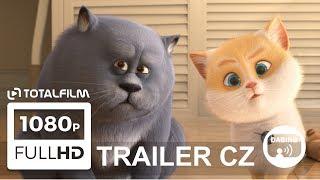 Příběh koček (2018) CZ dabing HD trailer