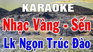 karaoke-nhac-vang-sen-hay-nhat-nhac-song-bolero-tru-tinh-lien-khuc-ngon-truc-dao-trong-hieu