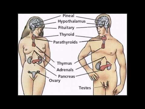 Hipertensiune arterială, căderea părului