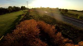 Cinematic Short-Sunset at the Park-Fpv Cinematic-Detroit Quad Crew