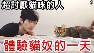 【尊】試著讓超討厭貓咪的人來體驗養貓的一天!?