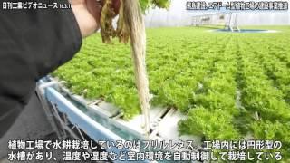 成長とともに野菜の苗が自動的にらせん状に外側移動-飛島建設のエアドーム型植物工場がスゴイ(動画あり)
