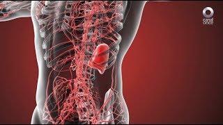 Diálogos en confianza (Salud) - ¿Qué son y cómo se tratan los linfomas?